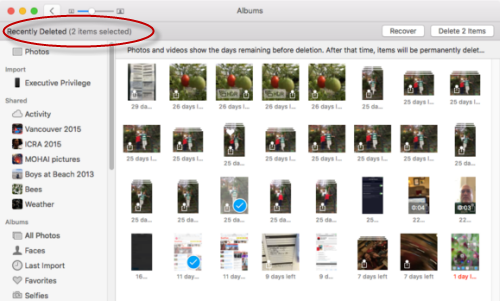 how to delete pictures and videos from iphone
