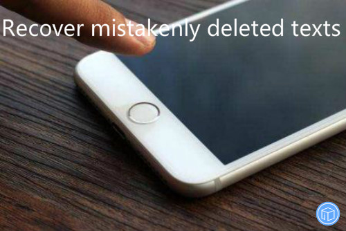 regain accidentally erased texts