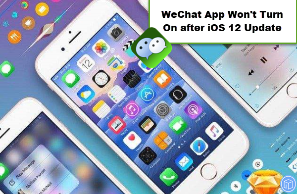 wechat app quits unexpectedly after ios 12 update