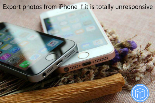 retrieve pictures from a dead iphone