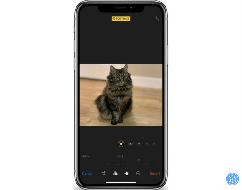 the new depth control feature with iphpne xs and xs max