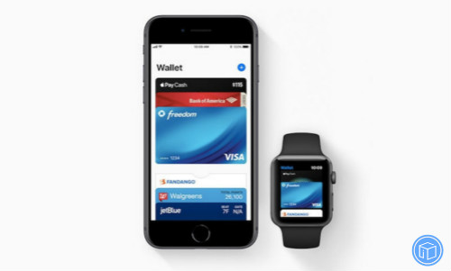 apple Pay is delayed any longer in India, apple pay's data storage and certification rules in india have been delayed