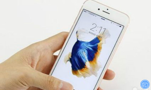 fix display issues on your iphone/ipad/ipod touch
